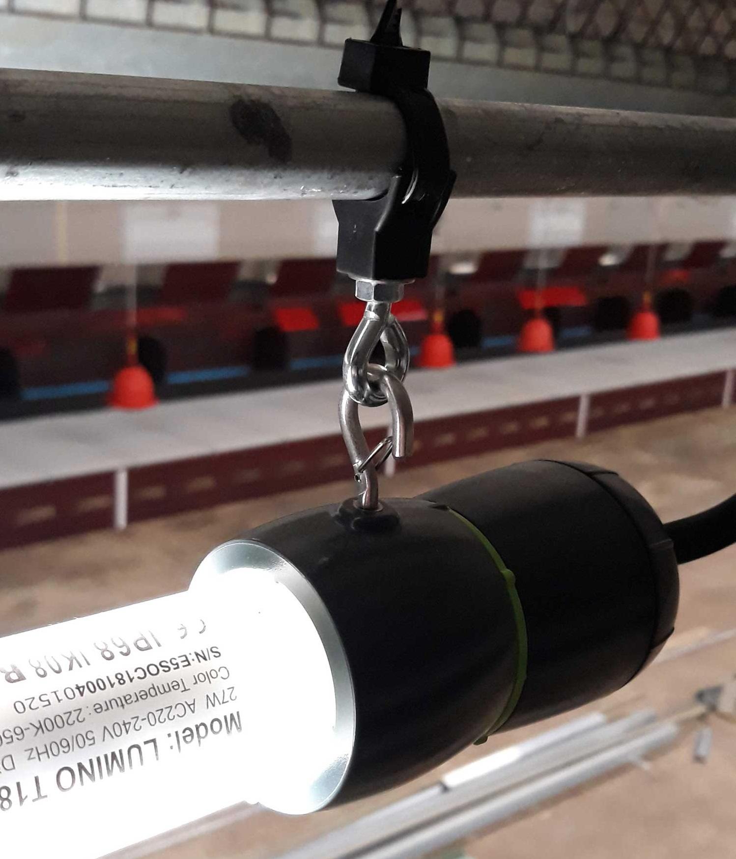 Solution d'éclairage élevage Lumino